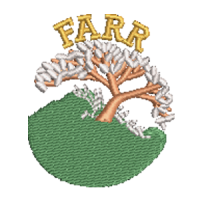 Farr Primary Inverness