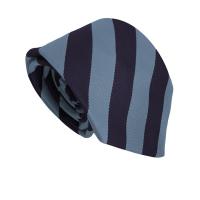 Invergordon Academy Tie